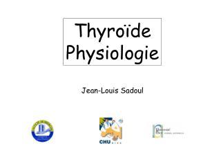 Thyro�de Physiologie