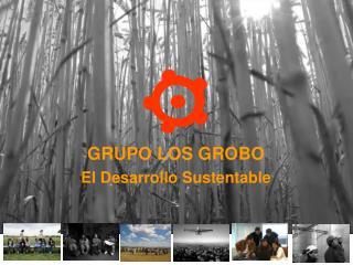GRUPO LOS GROBO El Desarrollo Sustentable
