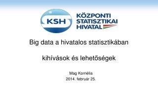 Big data a hivatalos statisztikában kihívások és lehetőségek