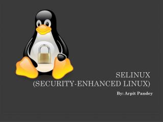 SELinux (Security-Enhanced Linux)