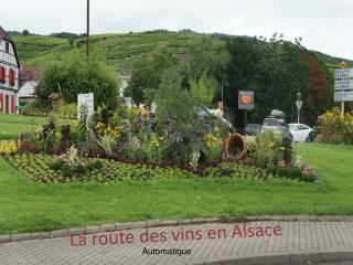 La route des vins en Alsace