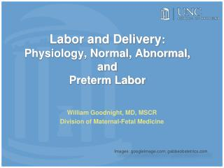 Labor and Delivery: Physiology, Normal, Abnormal,  and Preterm Labor