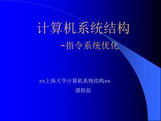 计算机系统结构 - 指令系统优化