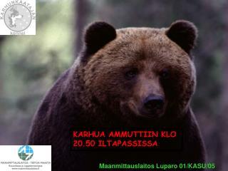 KARHUA AMMUTTIIN KLO 20.50 ILTAPASSISSA