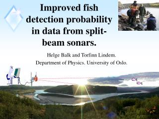 Improved fish detection probability in data from split-beam sonars.