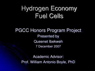 Hydrogen Economy Fuel Cells