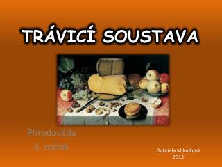 TR�VIC� SOUSTAVA
