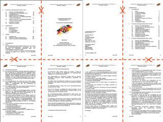 Im Internet werden die Richtlinien  im pdf-Format angeboten