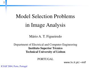 Model Selection Problems  in Image Analysis