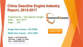 China Gasoline Engine Market Size, Share, Industry 2013-2017