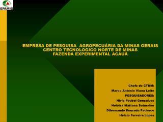 Chefe do CTNM:  Marco Antonio Viana Leite PESQUISADORES:  Nívio Poubel Gonçalves