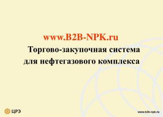 B2B-NPK.ru    Торгово-закупочная система  для нефтегазового комплекса