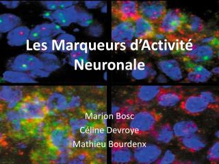 Les Marqueurs d'Activité Neuronale