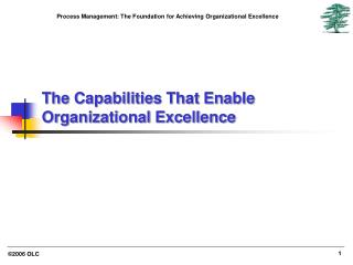 The Capabilities That Enable Organizational Excellence