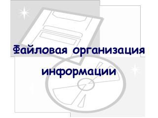 Файловая организация информации