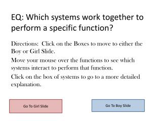 EQ: Which systems work together to perform a specific function?