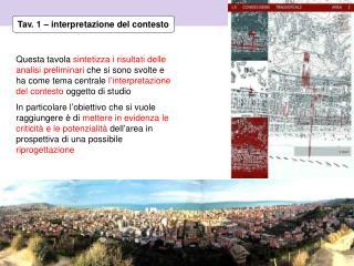 Tav. 1 – interpretazione del contesto