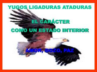 YUGOS LIGADURAS ATADURAS EL CARÁCTER  COMO UN ESTADO INTERIOR  AMOR, GOZO, PAZ