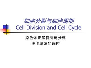 细胞分裂与细胞周期 Cell Division and Cell Cycle