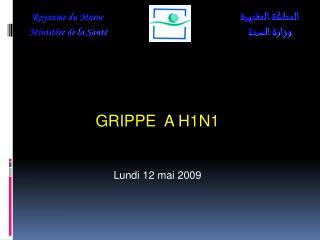 GRIPPE  A H1N1 Lundi 12 mai 2009