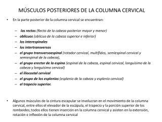 M SCULOS POSTERIORES DE LA COLUMNA CERVICAL
