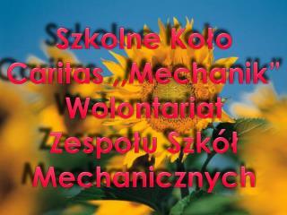 """Szkolne Koło Caritas ,,Mechanik"""" Wolontariat Zespołu Szkół Mechanicznych"""