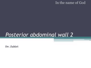Posterior abdominal wall 2