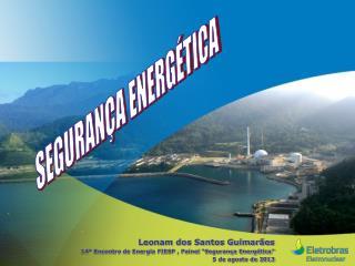 """Leonam dos Santos Guimarães 14º Encontro de Energia FIESP , Painel """"Segurança Energética"""""""