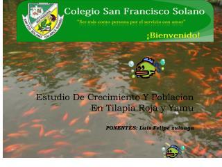 Estudio De Crecimiento Y Poblacion En Tilapia Roja y Yamu