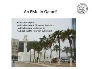 An EMu in Qatar?