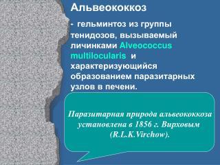 Паразитарная природа альвеококкоза установлена в 1856 г. Вирховым  (R.L.K.Virchow).