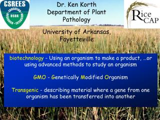 Dr. Ken Korth Department of Plant Pathology  University of Arkansas, Fayetteville