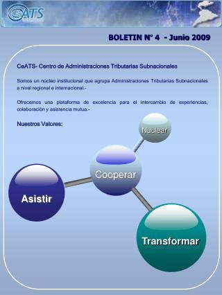 BOLETIN N° 4  - Junio 2009