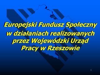 Europejski Fundusz Społeczny  w działaniach realizowanych przez Wojewódzki Urząd Pracy w Rzeszowie