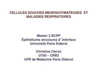 CELLULES SOUCHES MESENCHYMATEUSES  ET MALADIES RESPIRATOIRES Master 2  BCPP