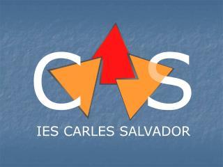 IES CARLES SALVADOR