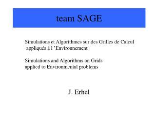 team SAGE