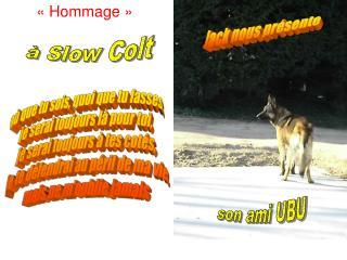 «Hommage »