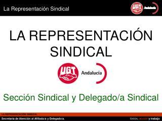 LA REPRESENTACIÓN SINDICAL Sección Sindical y Delegado/a Sindical