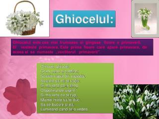 Ghiocelul:
