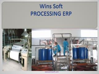 Wins Soft PROCESSING ERP