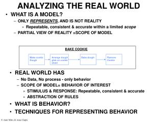 ANALYZING THE REAL WORLD