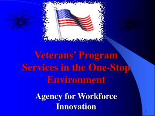 Veterans' Program Services in the One-Stop Environment Agency for Workforce Innovation