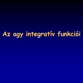 Az agy integrat í v funkci ó i
