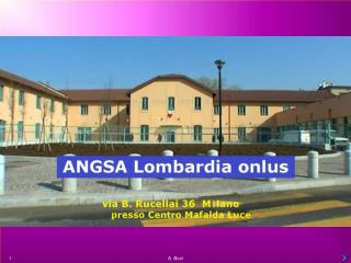 ANGSA LOMBARDIA ONLUS