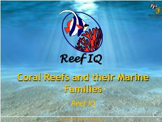 Coral Reefs and their Marine Families Reef IQ