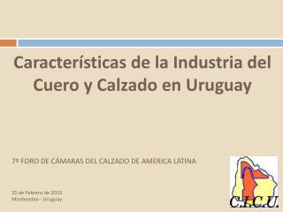 Características de la Industria del Cuero y Calzado en Uruguay