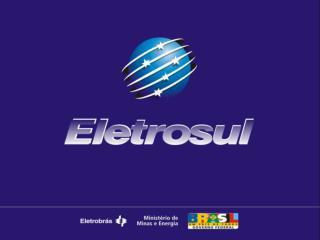 SETOR ELÉTRICO BRASILEIRO  ELETROSUL  Perfil Empresarial  Investimentos em Geração