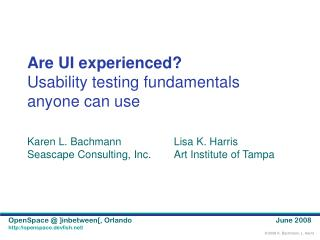 Are UI experienced? Usability testing fundamentals anyone can use