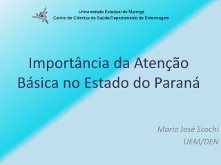 Importância da Atenção Básica no Estado do Paraná